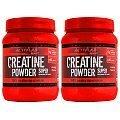 Activlab Creatine Powder kreatyna smakowa